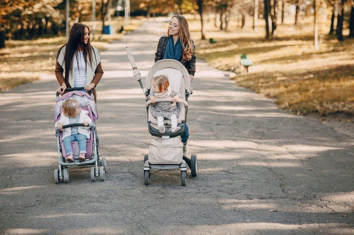 Санки-коляски для новорожденных детей: какие лучше выбрать и купить